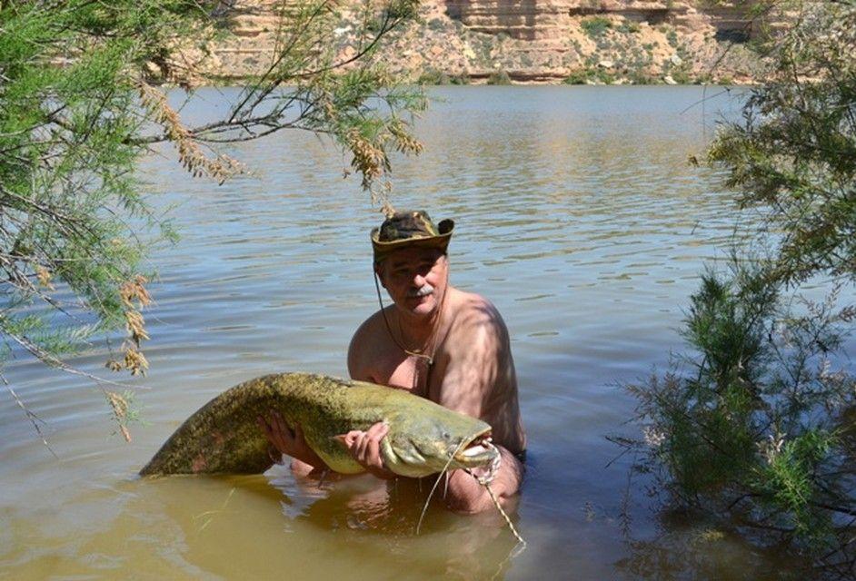 Rio Ebro LM Waller 201200001
