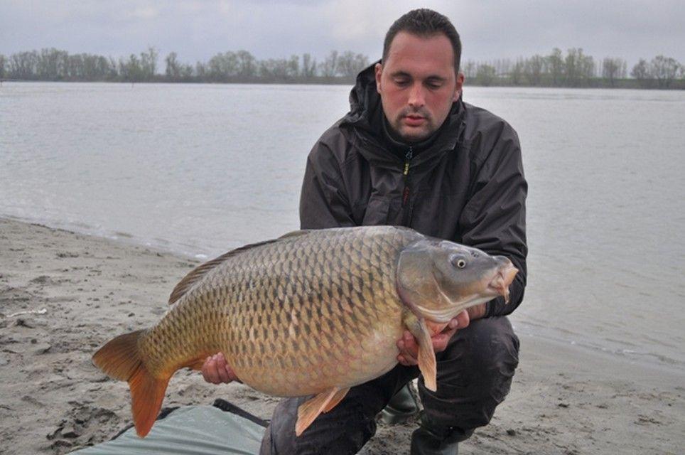 Rio Ebro LM Waller 201200012