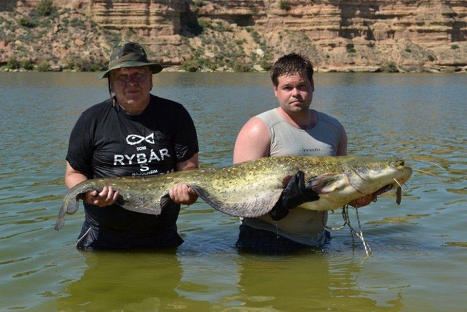 Rio Ebro LM Waller 201200013