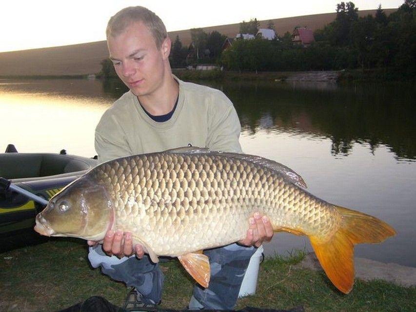 Rio Ebro LM Waller 201200016
