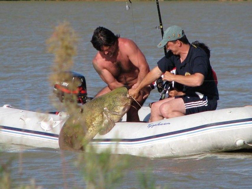 Rio Ebro LM Waller 201200019