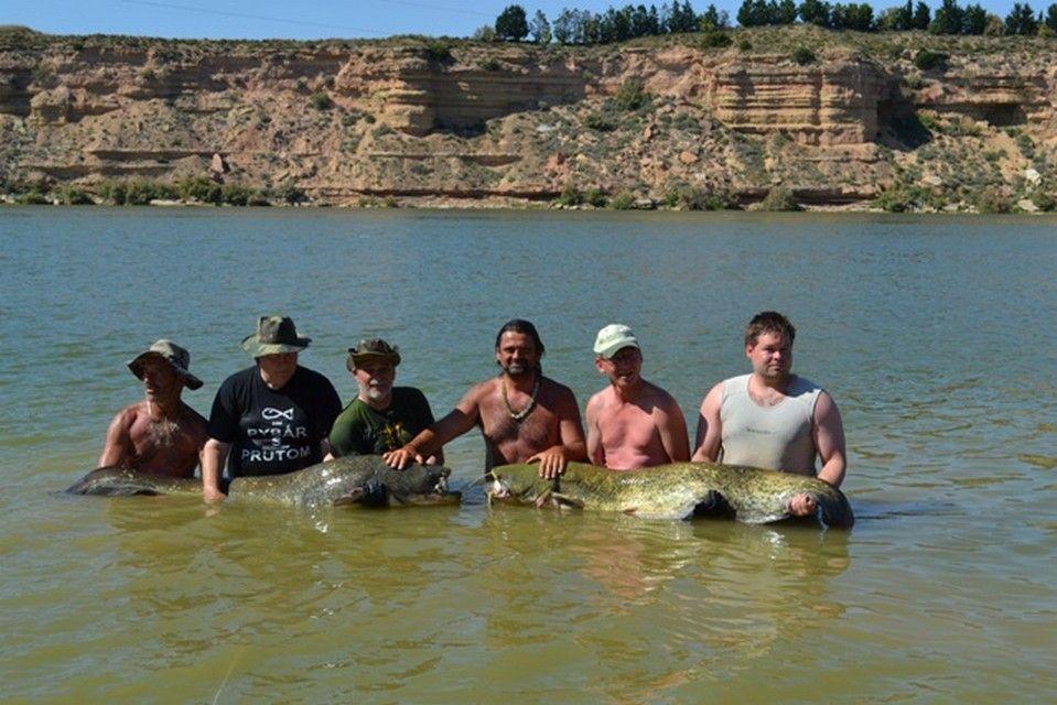 Rio Ebro LM Waller 201200022