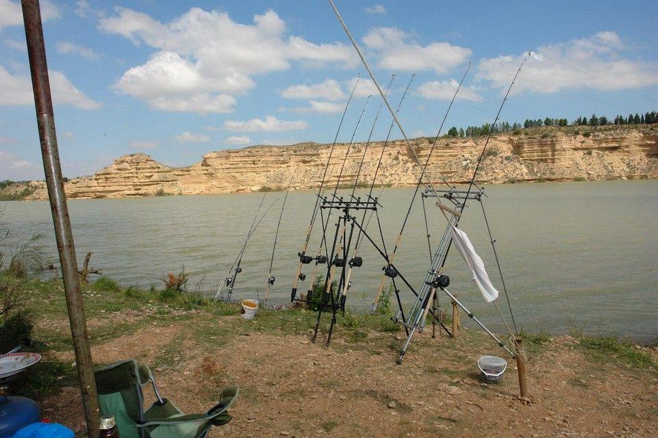 Rio Ebro LM Waller 201200029
