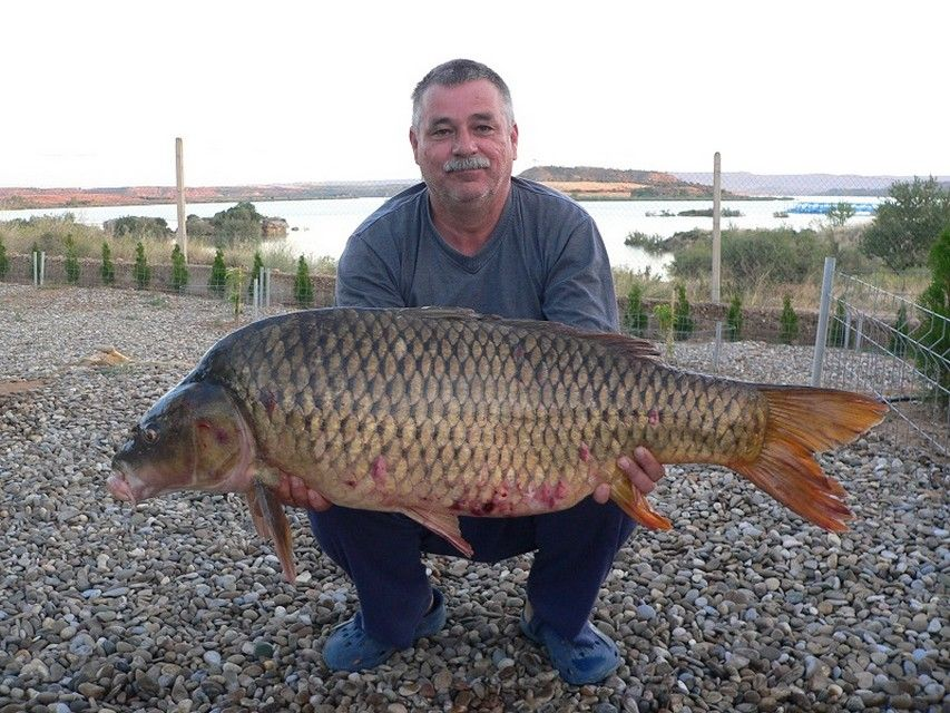 Rio Ebro LM Waller 201300061