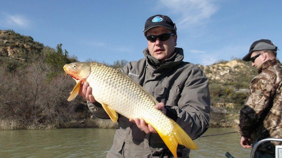 Rio Ebro LM Waller 201300062