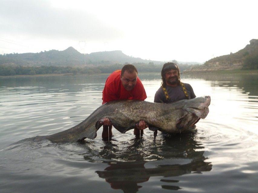 Rio Ebro LM Waller 201300099