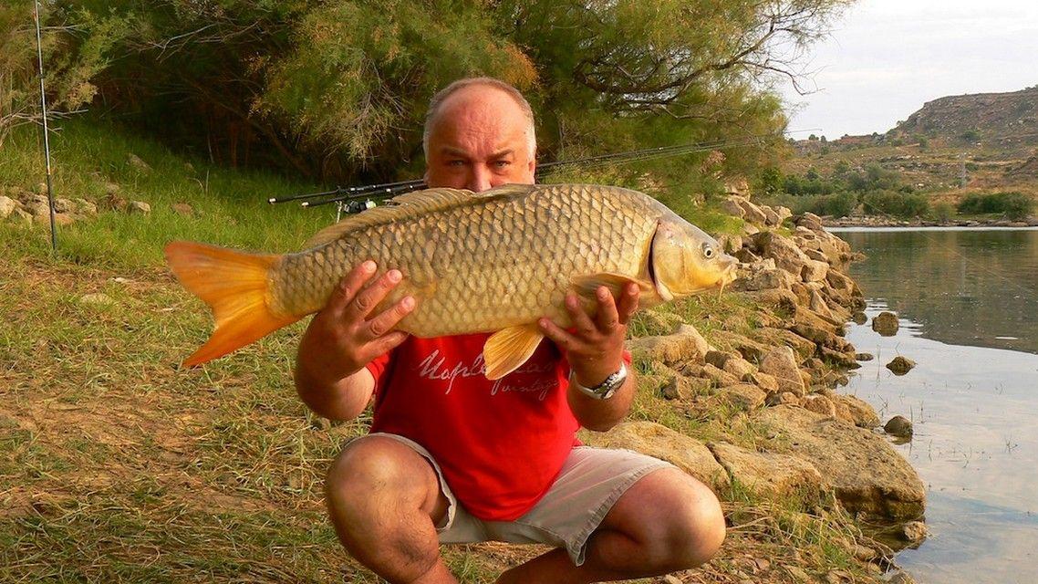 Rio Ebro LM Waller 201300180
