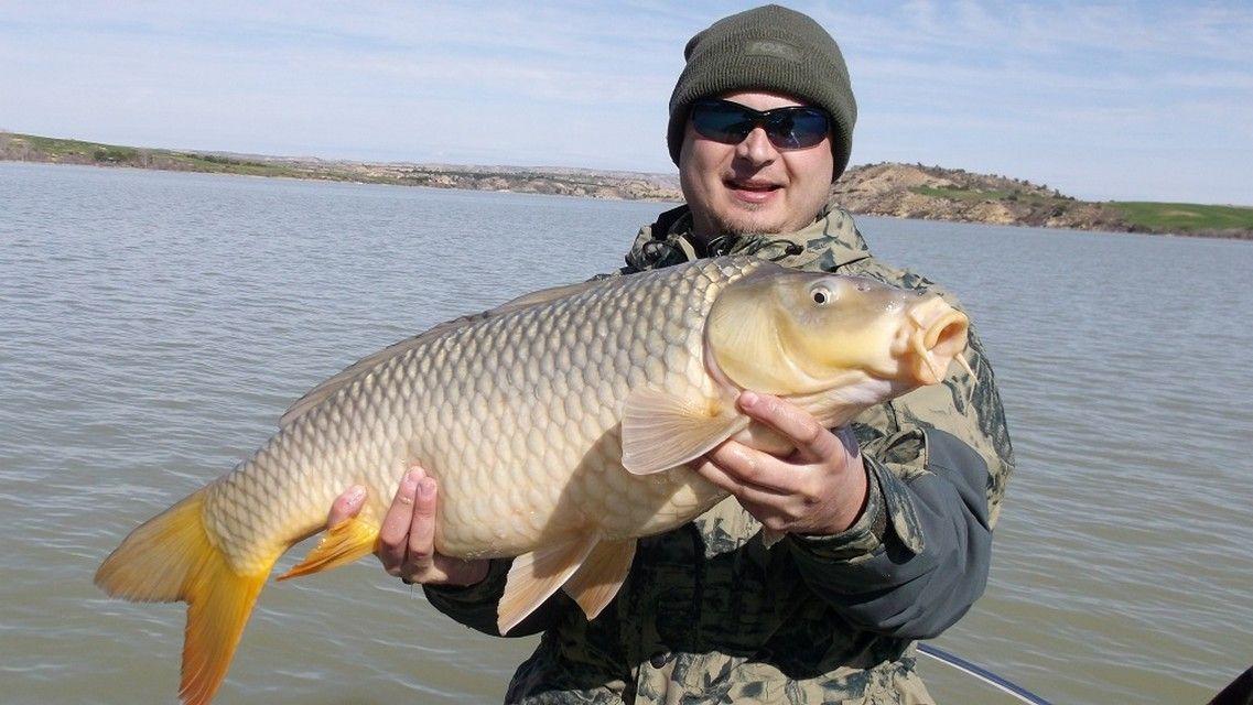 Rio Ebro LM Waller 201300207