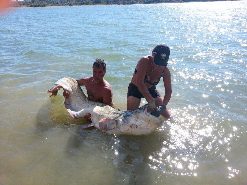 Rio Ebro LM Waller 201300236
