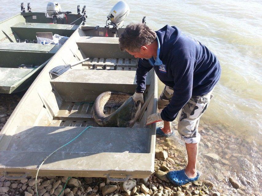 Rio Ebro LM Waller 201300252