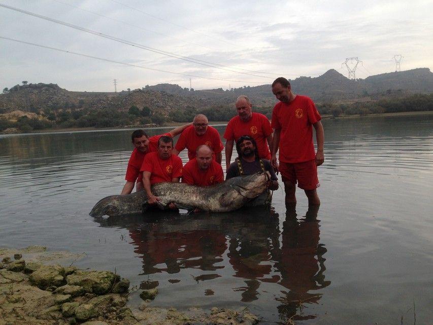 Rio Ebro LM Waller 201300263