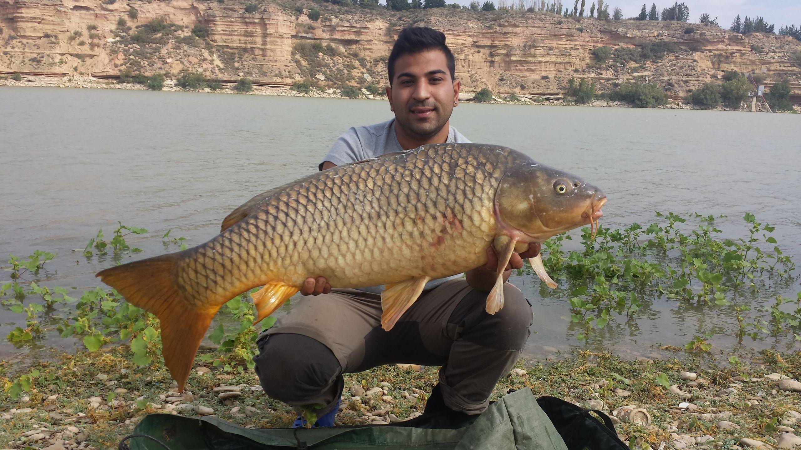 Rio Ebro LM Waller 201400009