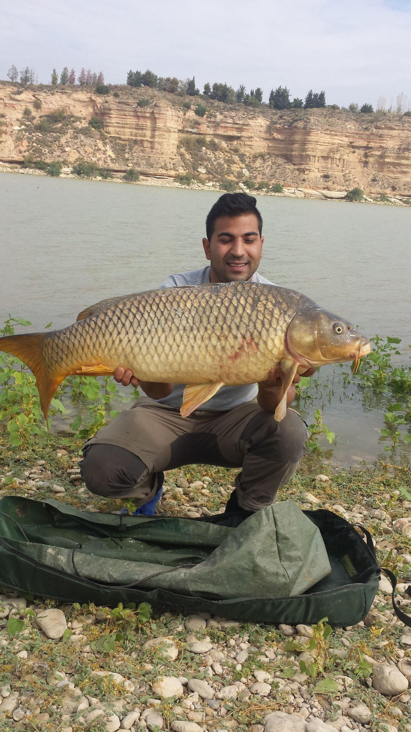 Rio Ebro LM Waller 201400027