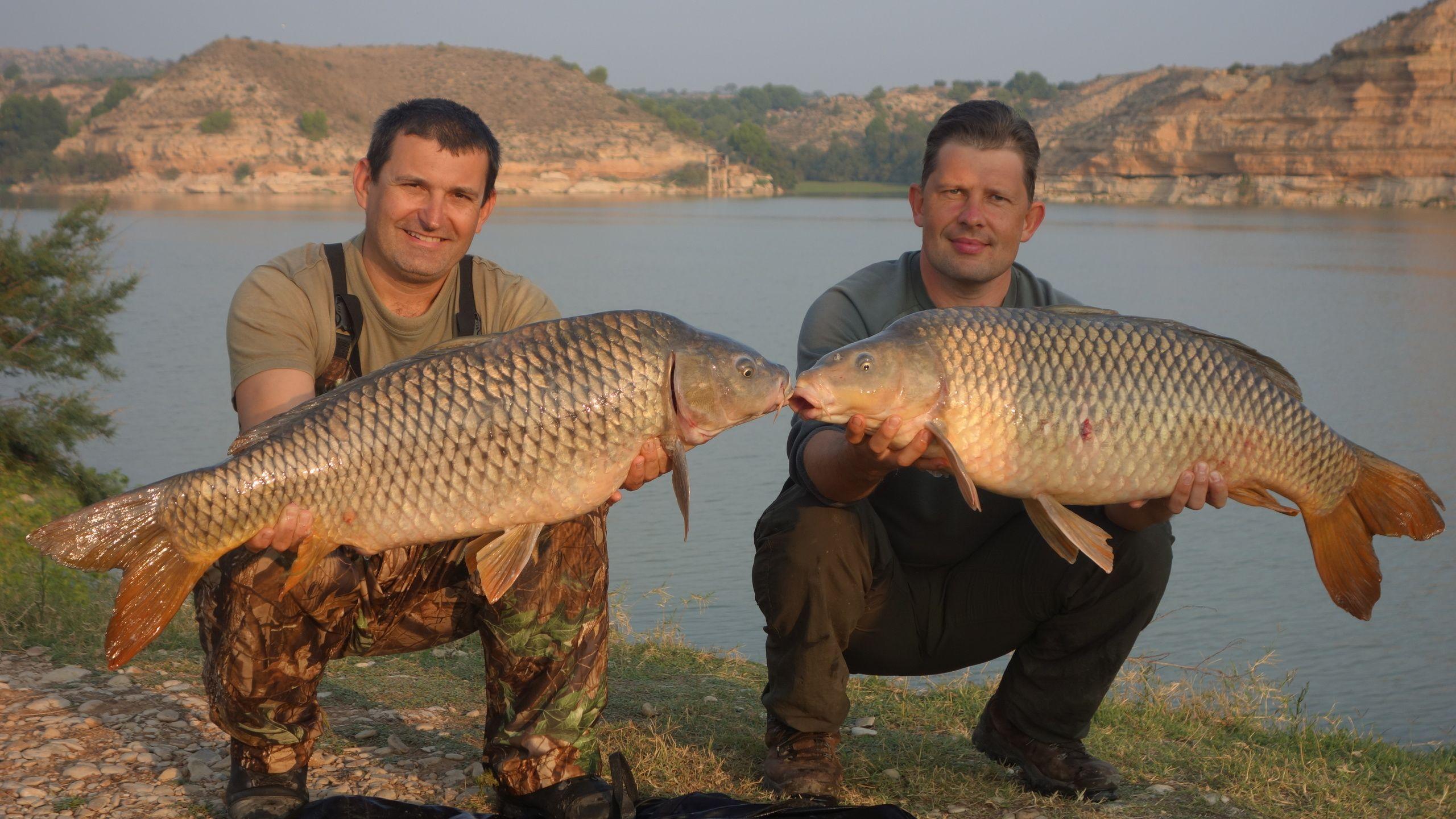 Rio Ebro LM Waller 201400038