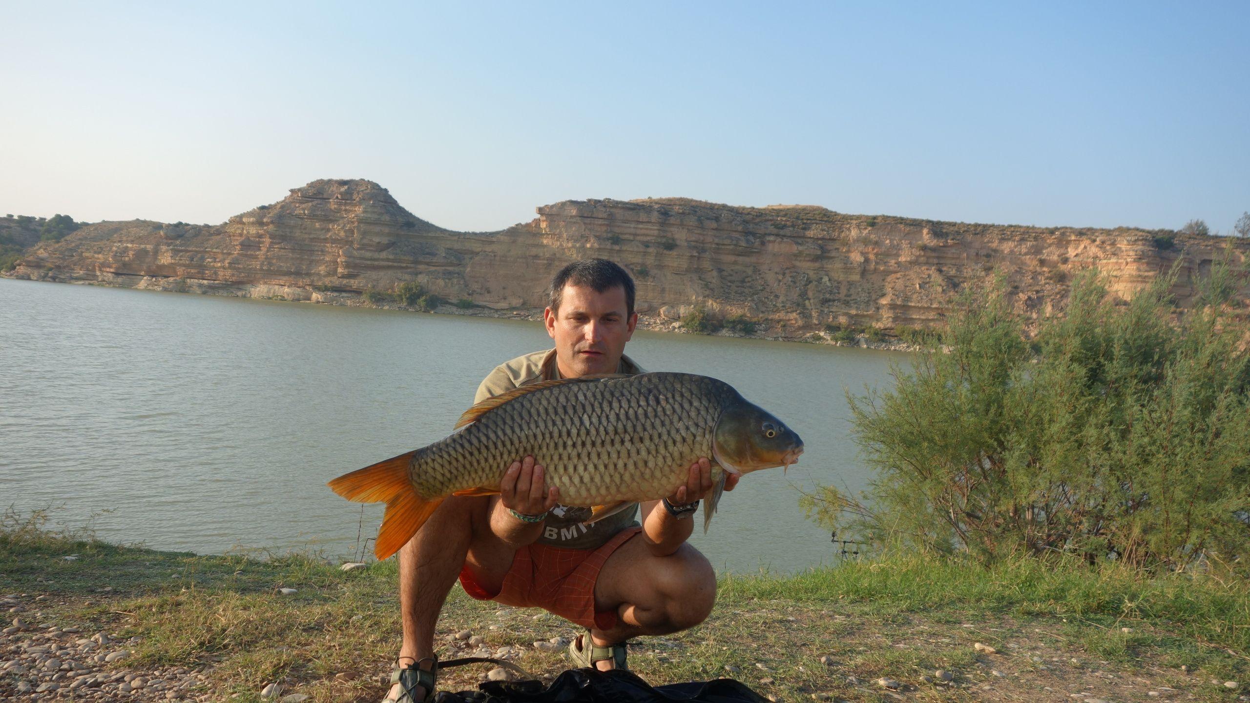 Rio Ebro LM Waller 201400055