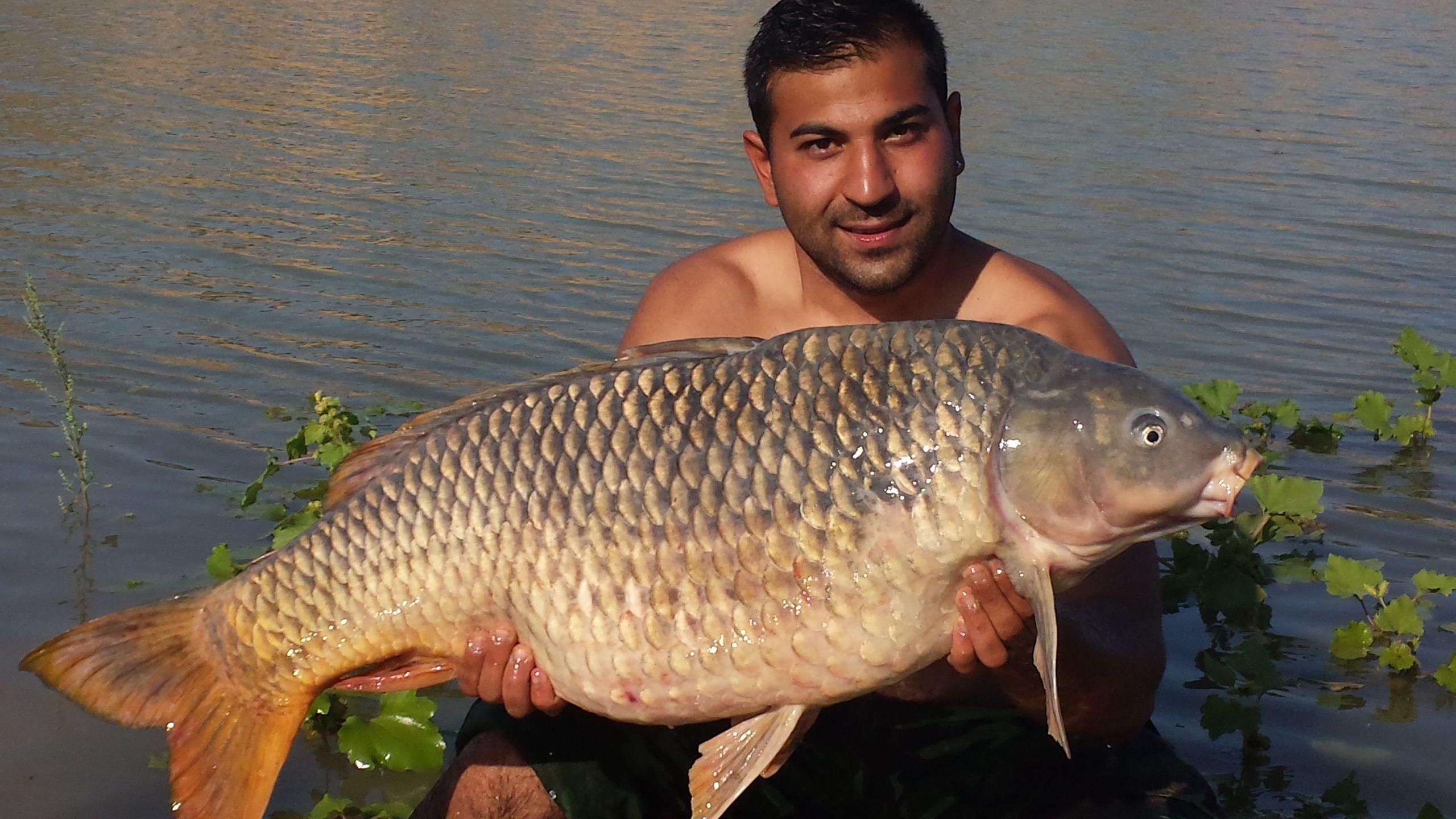 Rio Ebro LM Waller 201400091