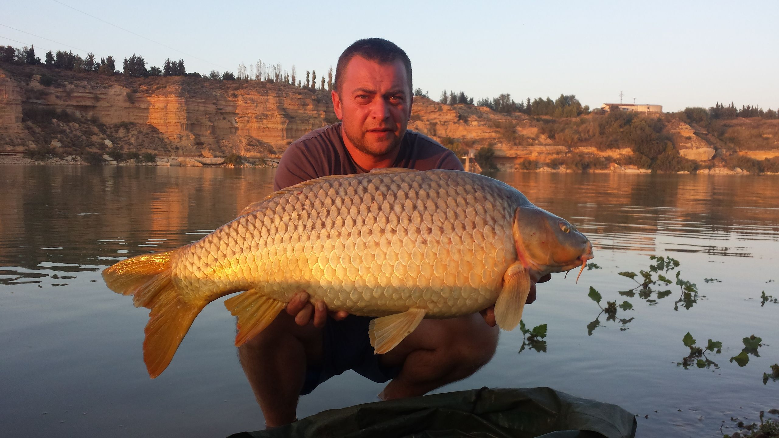 Rio Ebro LM Waller 201400114