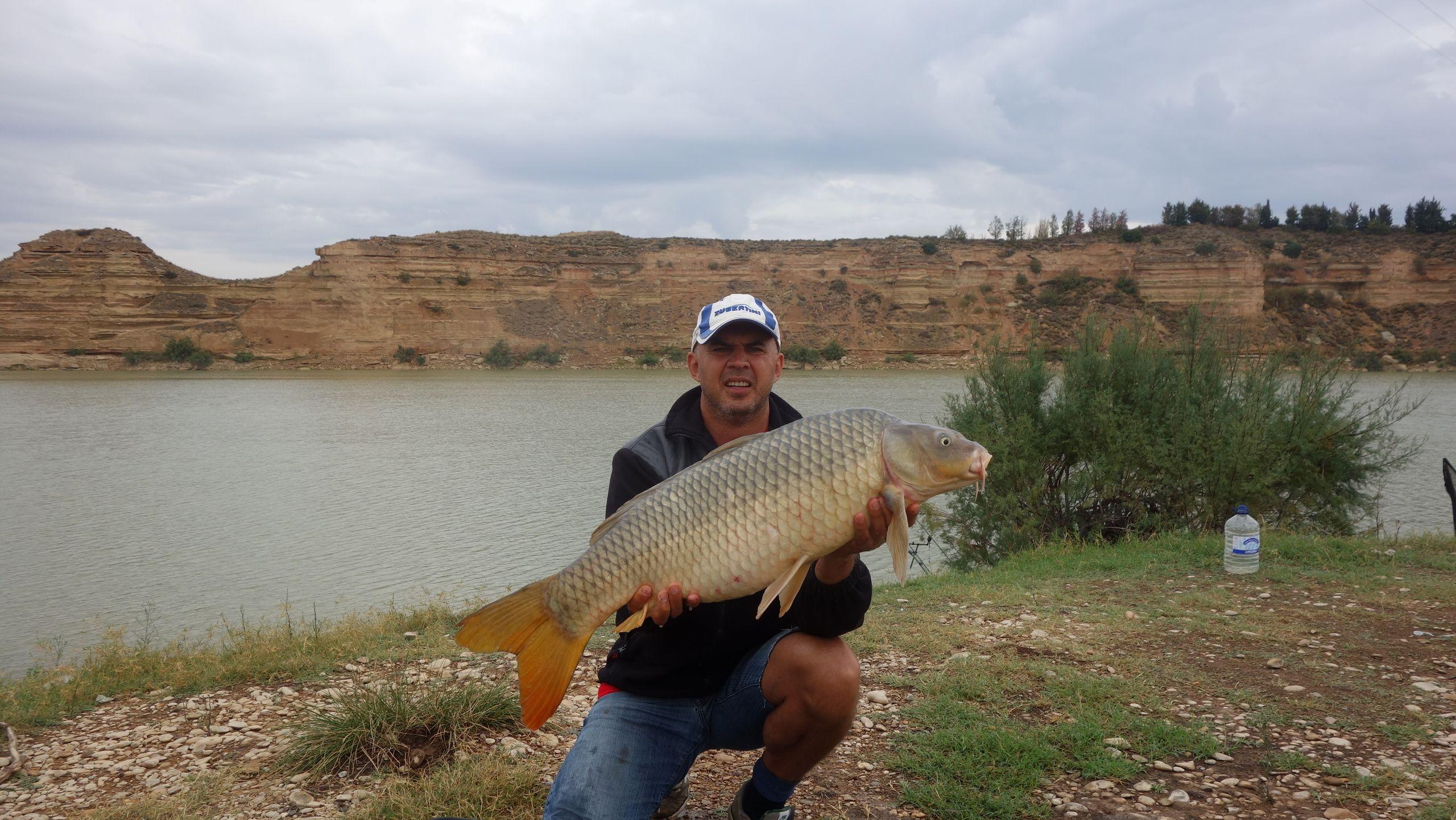 Rio Ebro LM Waller 201400136