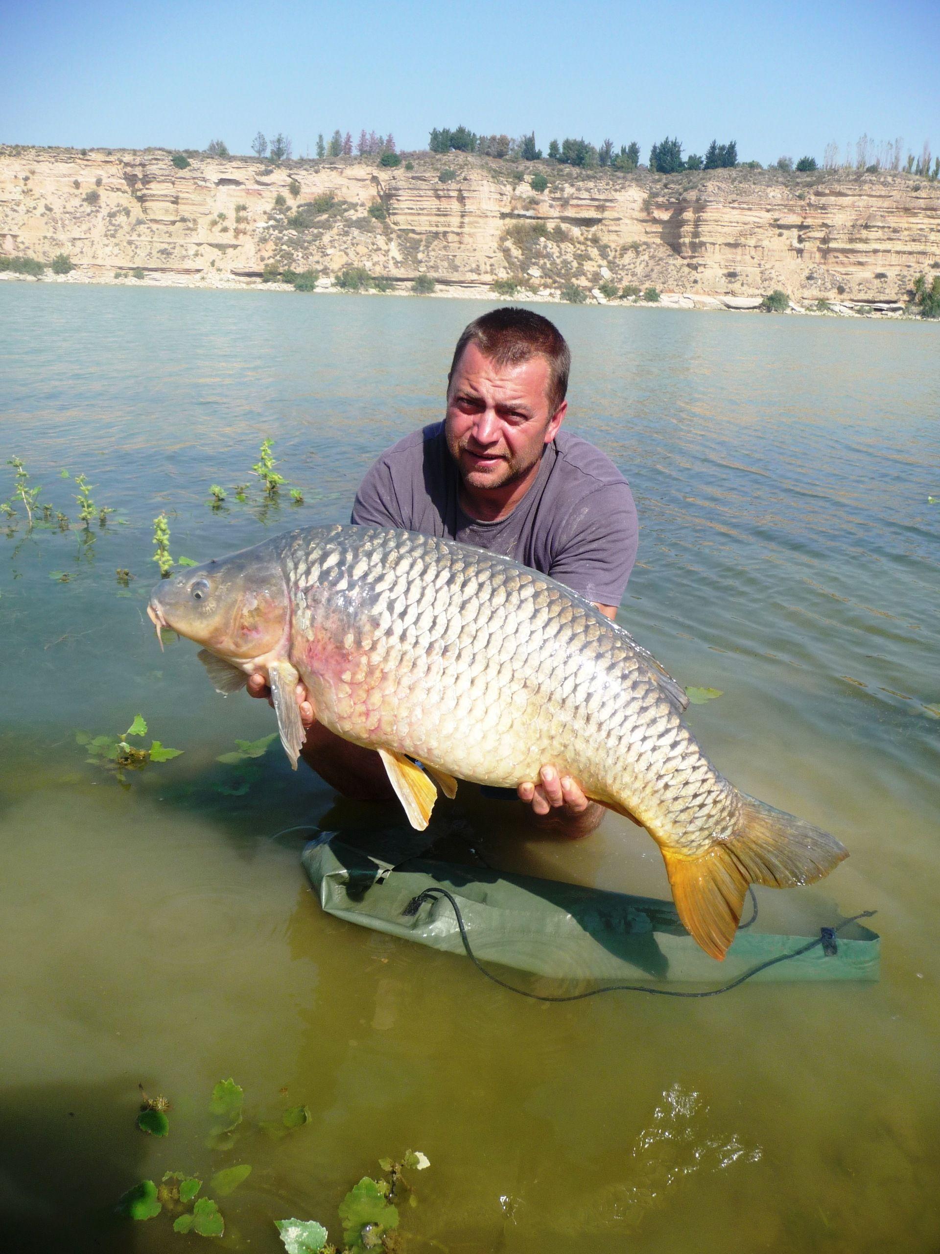 Rio Ebro LM Waller 201400138