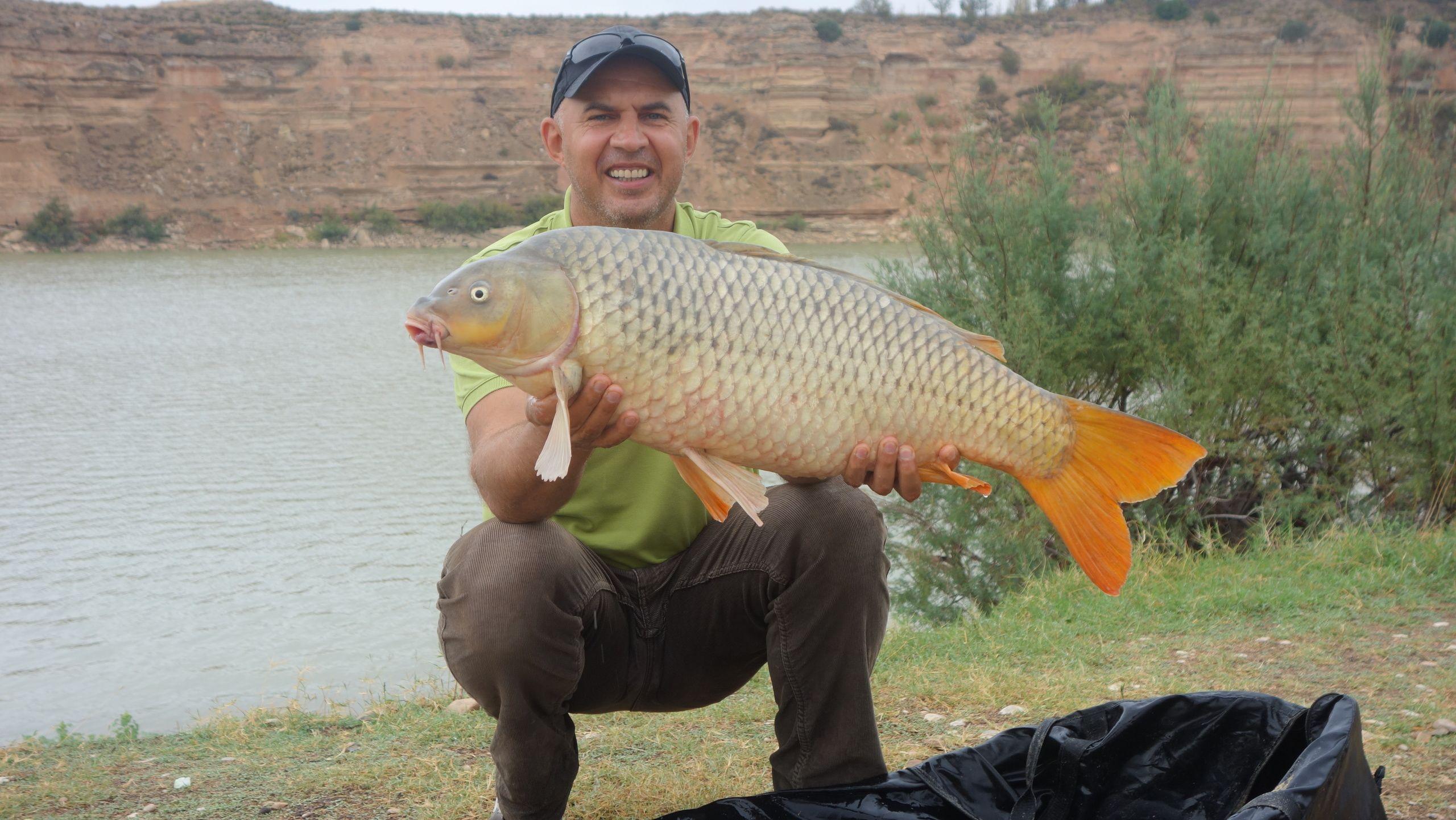 Rio Ebro LM Waller 201400182