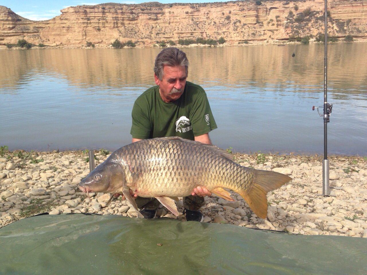 Rio Ebro LM Waller 201400190