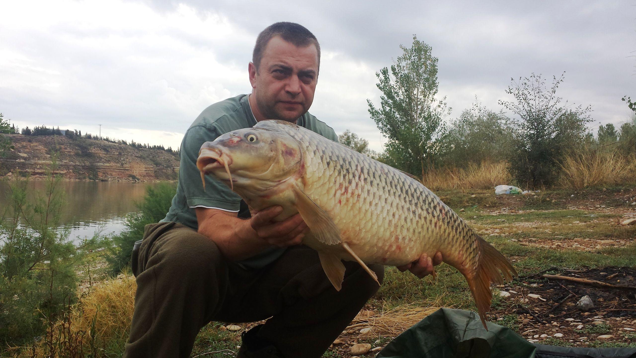 Rio Ebro LM Waller 201400219