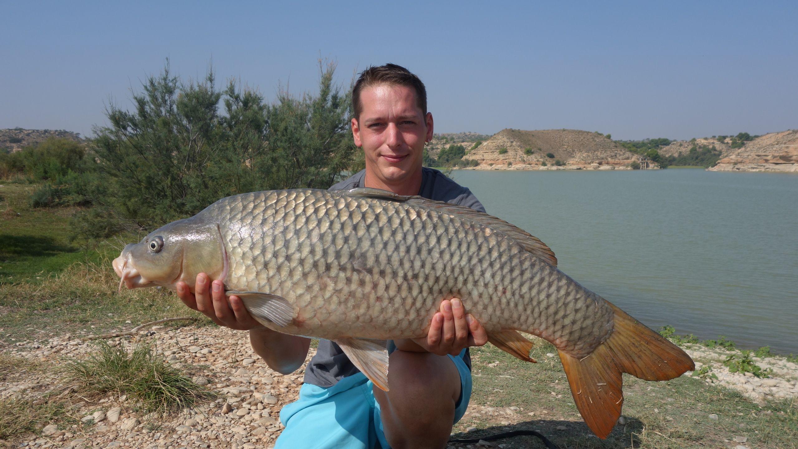 Rio Ebro LM Waller 201400225