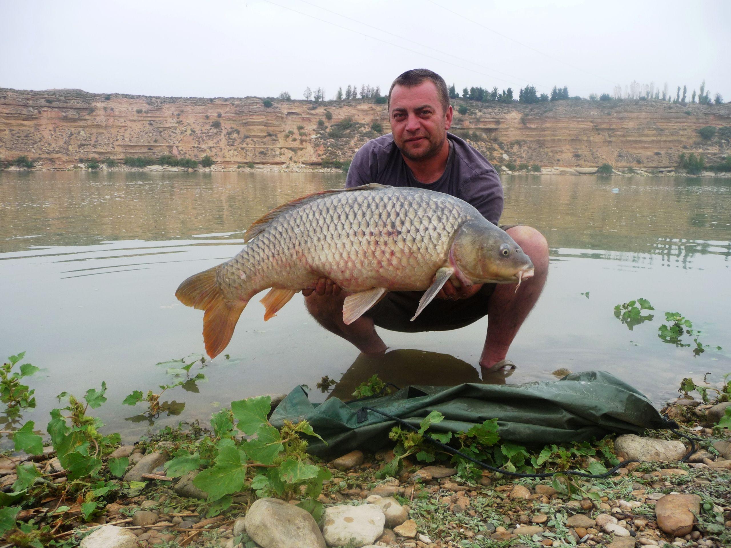 Rio Ebro LM Waller 201400272