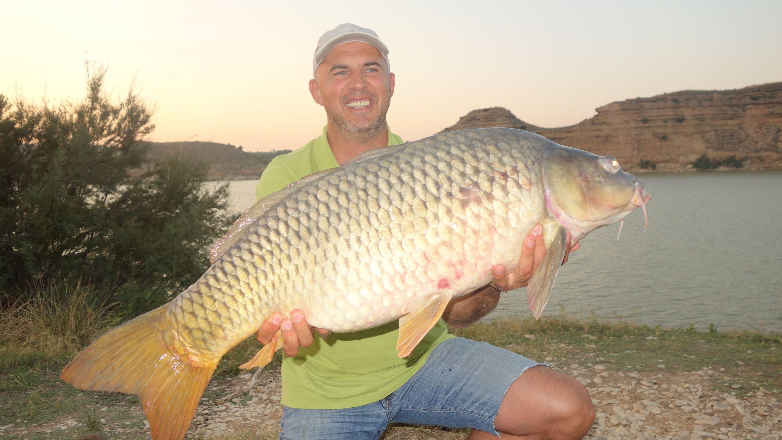 Rio Ebro LM Waller 201400277