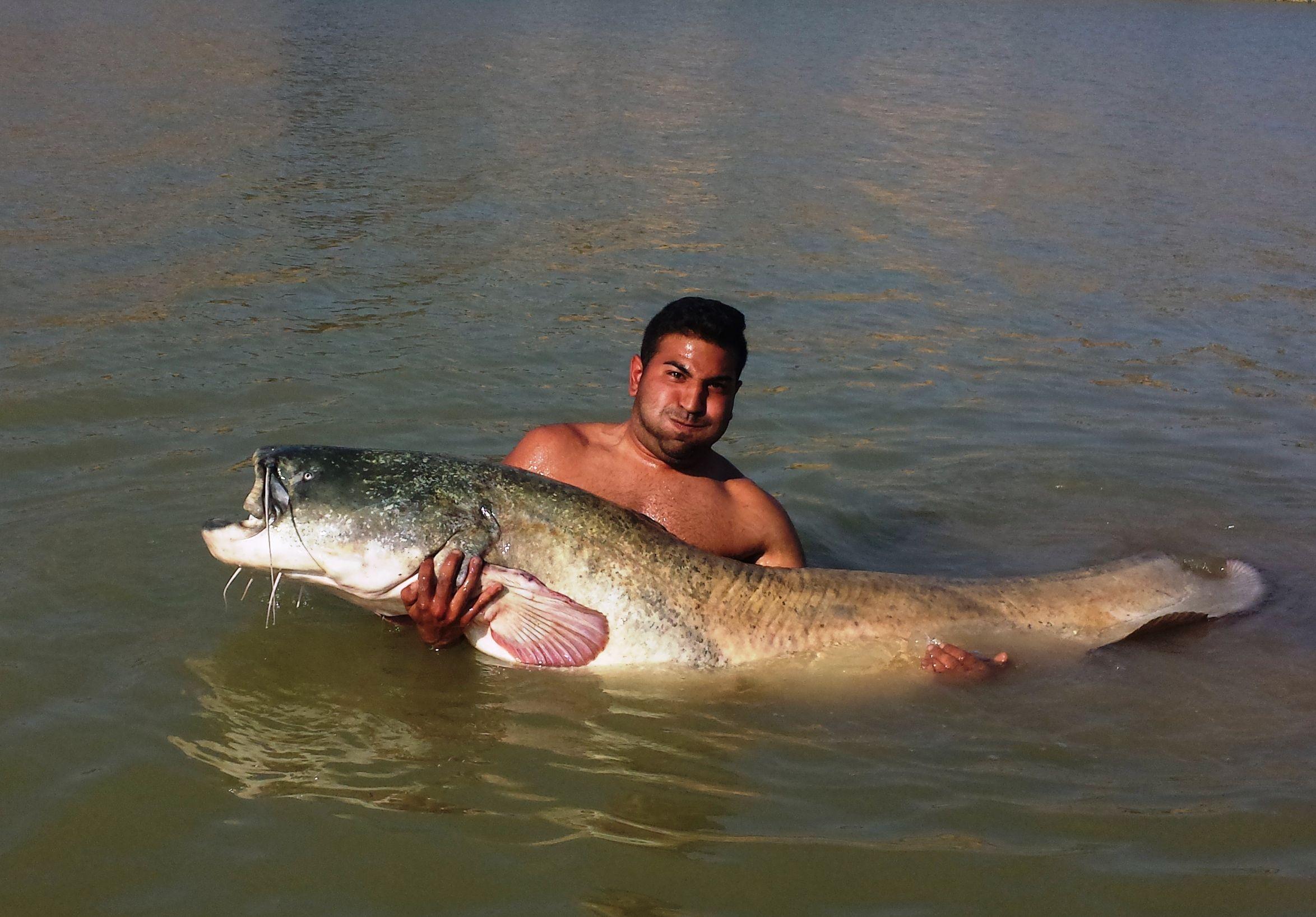 Rio Ebro LM Waller 201400283