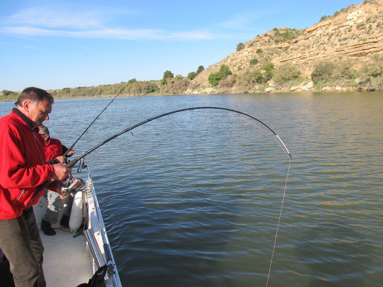 Rio Ebro LM Waller 201400329