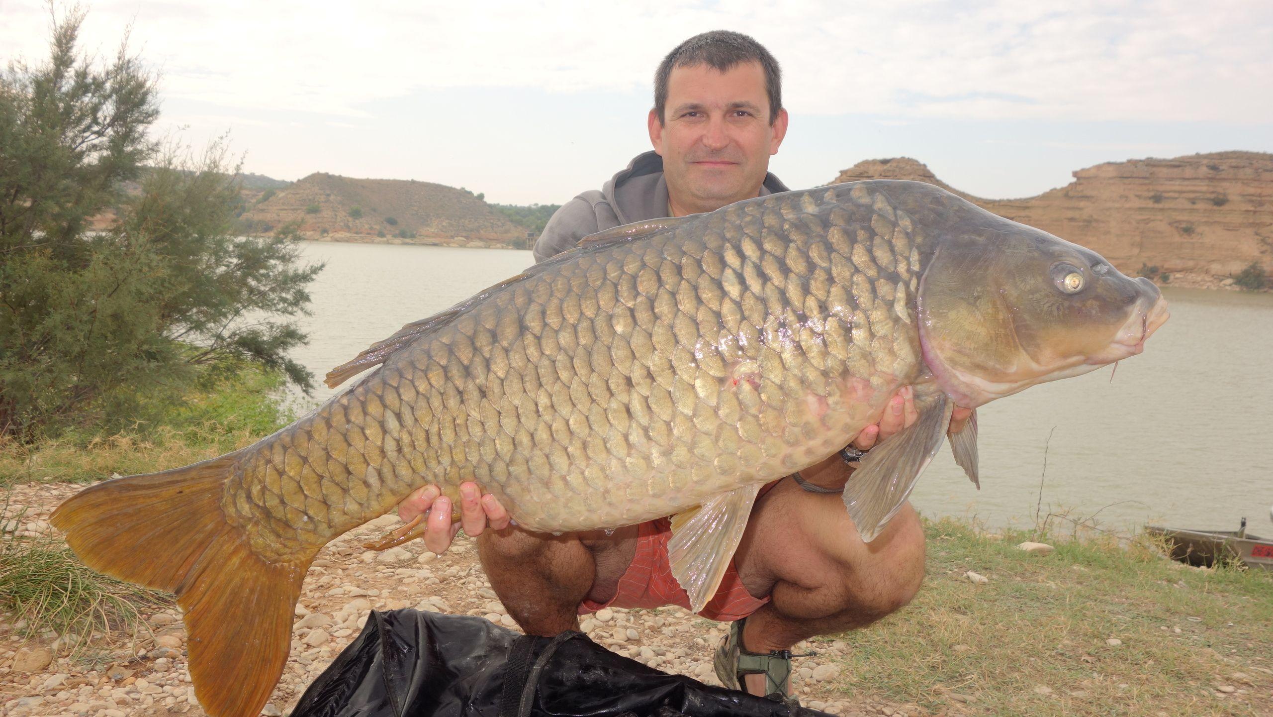 Rio Ebro LM Waller 201400335