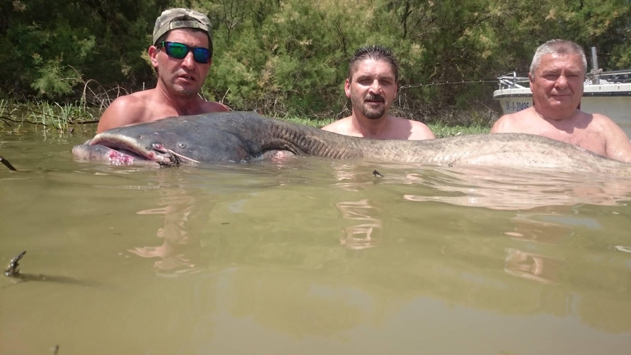 Rio Ebro LM Waller 201600008