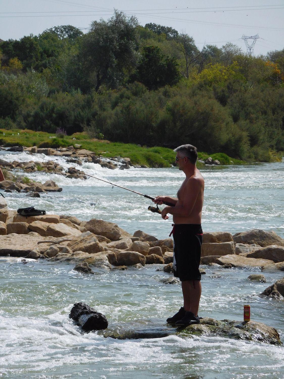 Rio Ebro LM Waller 201600016
