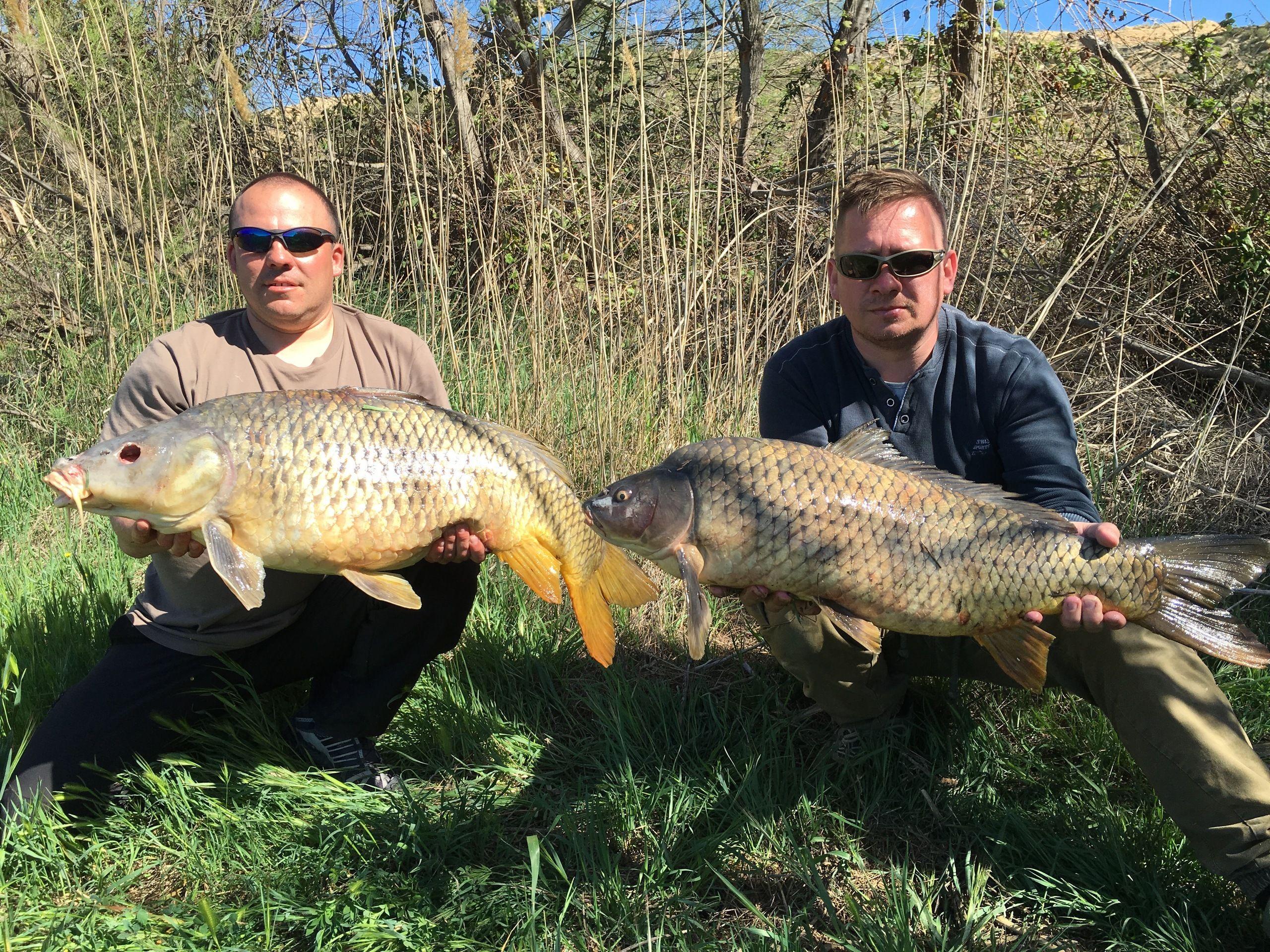 Rio Ebro LM Waller 201600030