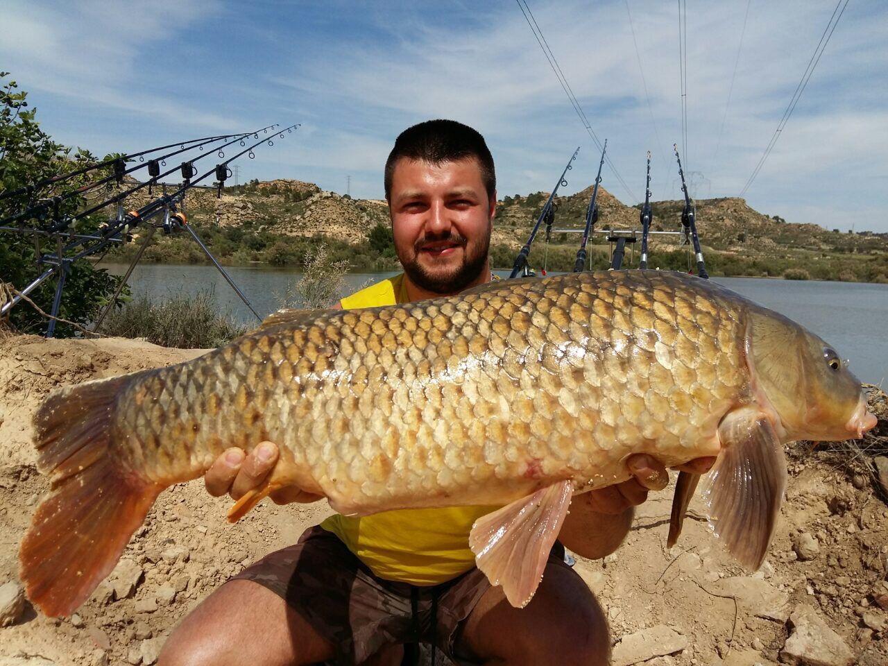 Rio Ebro LM Waller 201600032
