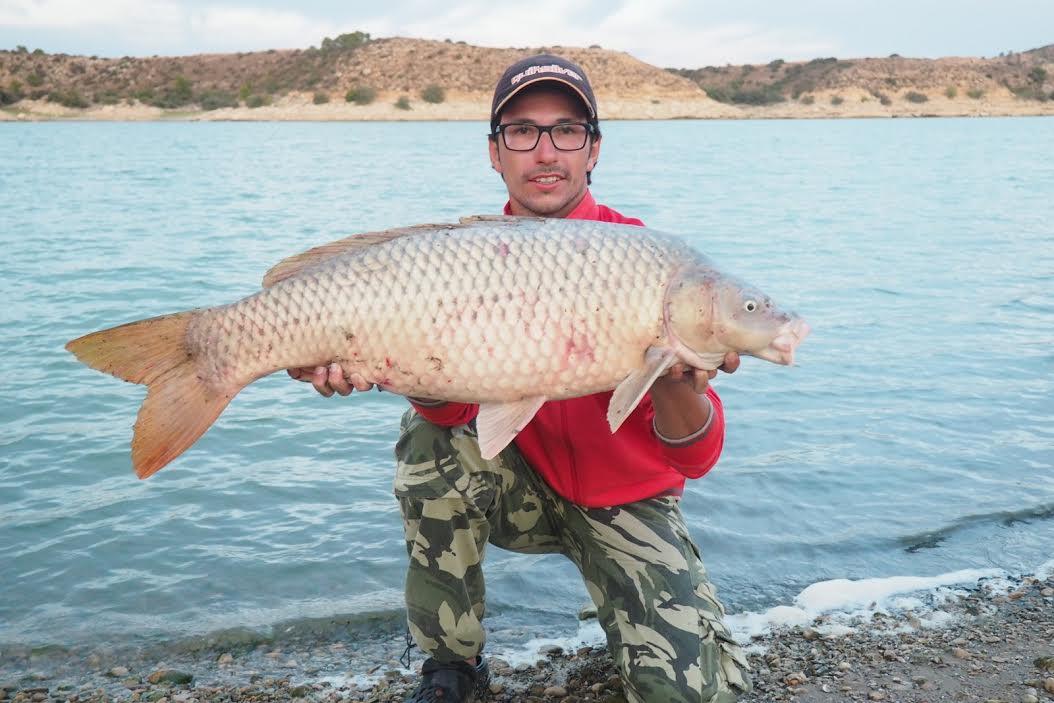 Rio Ebro LM Waller 201600037