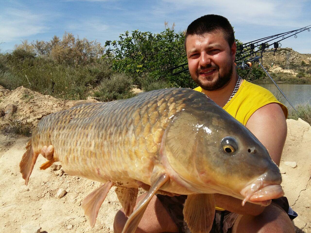 Rio Ebro LM Waller 201600081