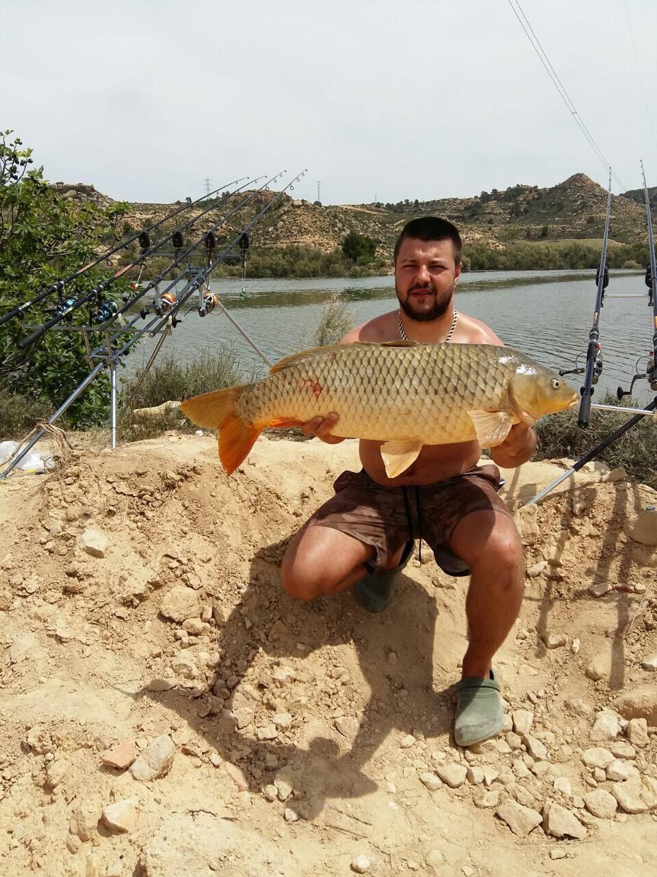 Rio Ebro LM Waller 201600148