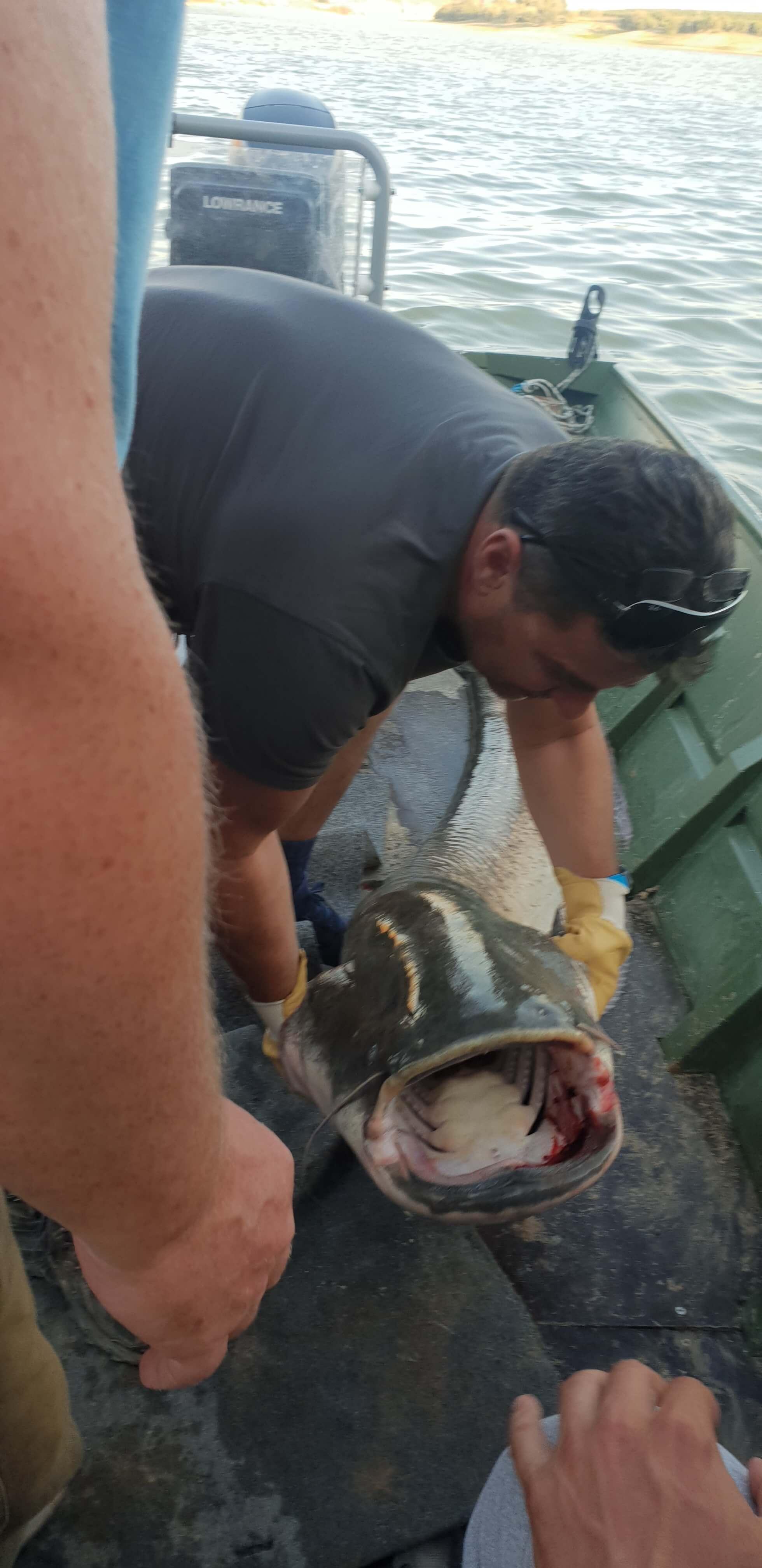 Rio Ebro 2018 LM Waller Fishing Camp